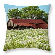 Poppy Invasion In Hillcountry-texas Throw Pillow