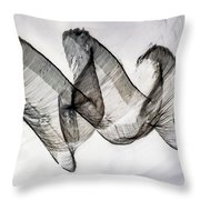 Inverted Reflection Abstract 403 Throw Pillow