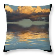 Invest Throw Pillow