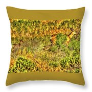 Invisible Nature Three Surreal C Throw Pillow