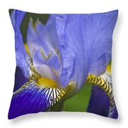 Invitation To Blue Throw Pillow