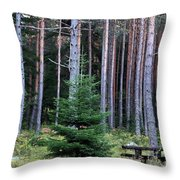 Invitation Throw Pillow