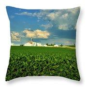 Iowa Soybean Farm Throw Pillow