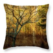 Ipswich 1 Throw Pillow