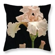 Iris 2 Throw Pillow