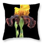 Iris 3 Throw Pillow