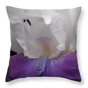 Iris 5 Throw Pillow
