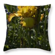 Iris 6 Throw Pillow