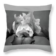 Iris 6622 H_4 Throw Pillow