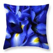 Iris Abstract Throw Pillow