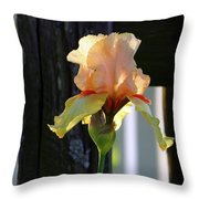 Iris Along The Fence 6731 H_2 Throw Pillow