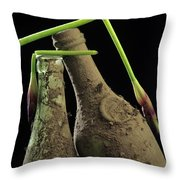 Iris And Old Bottles Throw Pillow