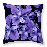 Iris At Night Throw Pillow