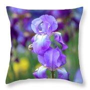 Ballet Girl. The Beauty Of Irises Throw Pillow
