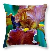 Iris Beauty Photograph Throw Pillow