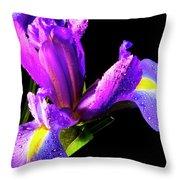 Iris Bloom One Throw Pillow