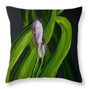 Iris Buds  49 Throw Pillow