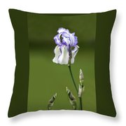 Iris Buds To Flower Throw Pillow