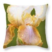 Iris Canary Frills Throw Pillow