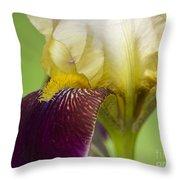 iris Closeup 2 Throw Pillow