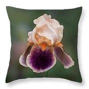 Iris Curls Throw Pillow