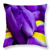 Iris Detail 2 Throw Pillow