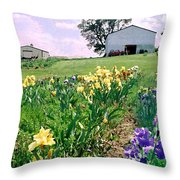 Iris Farm Throw Pillow by Steve Karol