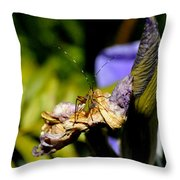 Iris Flower And Visitor Throw Pillow