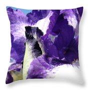 Iris Flower Art Print Purple Irises Botanical Floral Artwork Throw Pillow