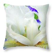 Iris Flower Art Print White Blue Purple Irises Baslee Troutman Throw Pillow