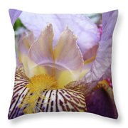 Iris Flower Art Purple Lavender Irises Giclee Prints Baslee Troutman  Throw Pillow