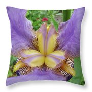 Iris Flower Lavender Purple Yellow Irises Garden 19 Art Prints Baslee Troutman Throw Pillow