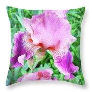 Iris Flower Photograph I Throw Pillow