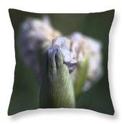 Iris Flower Starts To Reveal  Throw Pillow