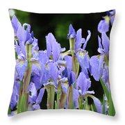 Iris Flowers Art Print Blue Purple Irises Spring Rain Throw Pillow