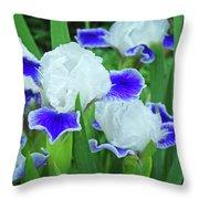 Iris Flowers Art Prints Blue White Irises Floral Baslee Troutman Throw Pillow