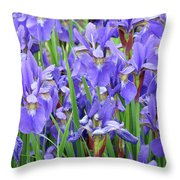 Iris Flowers Artwork Purple Irises 9 Botanical Garden Floral Art Baslee Troutman Throw Pillow