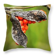 Iris Foetidissima - Stinking Gladwyn Throw Pillow