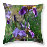 Iris Garden Throw Pillow