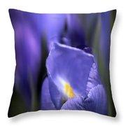 Iris Glow Throw Pillow