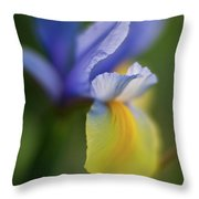 Iris Grace Throw Pillow by Mike Reid