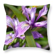 Iris Haiku Throw Pillow