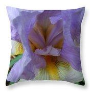 Iris Heart Throw Pillow