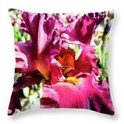 Iris In Close Up Throw Pillow