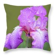 Iris In Summer Rain  Throw Pillow