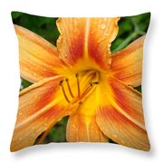 Iris In The Morning Throw Pillow