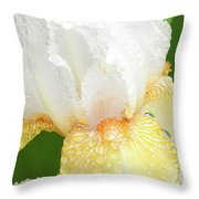 Iris In The Rain II Throw Pillow