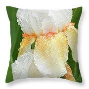 Iris In The Rain Throw Pillow