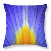 Iris Leaf Abstract Throw Pillow