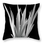 Iris Leaves Throw Pillow